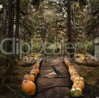 Spooky Trees And  Pumpkins