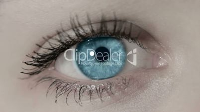 a beautiful eye staring into the camera 1080p