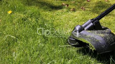 Cutting grass with lawn mower. Close Up.