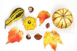 Herbstdekoration. autumn decoration