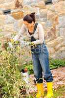 Autumn gardening young woman clipping bush hobby