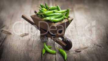 jalapenos chili pepper in a miniature wheelbarrow
