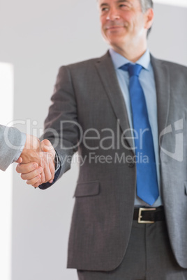 Pleased businessman shaking a hand
