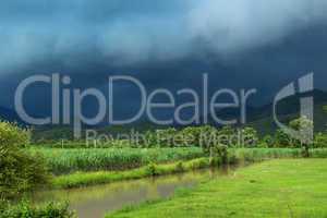 sugar cane field under storm