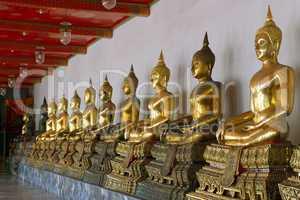 row of sitting buddha