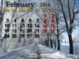 calendar for the february of 2014  with winter landscape