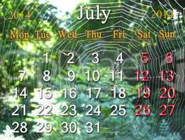 calendar for the july of 2014 on the background of spider's web