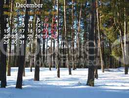 calendar for the december of 2014 with picture of winter forest