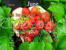 calendar for the june of 2014 year