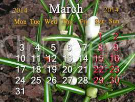calendar for may of 2014 year with lily of the valley