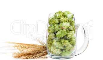 Bierglas mit Hopfendolden