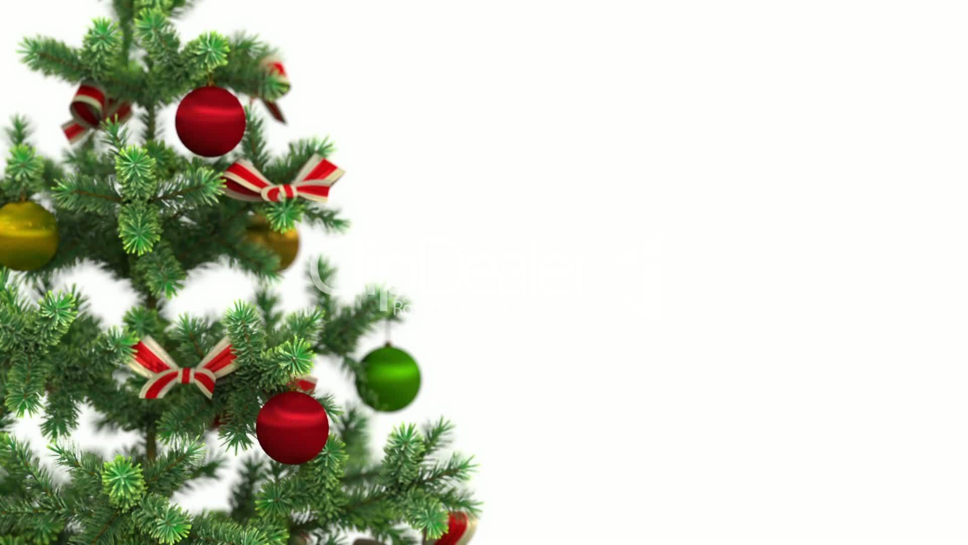 Beautiful Christmas Tree Close Up On White Background HD 1080