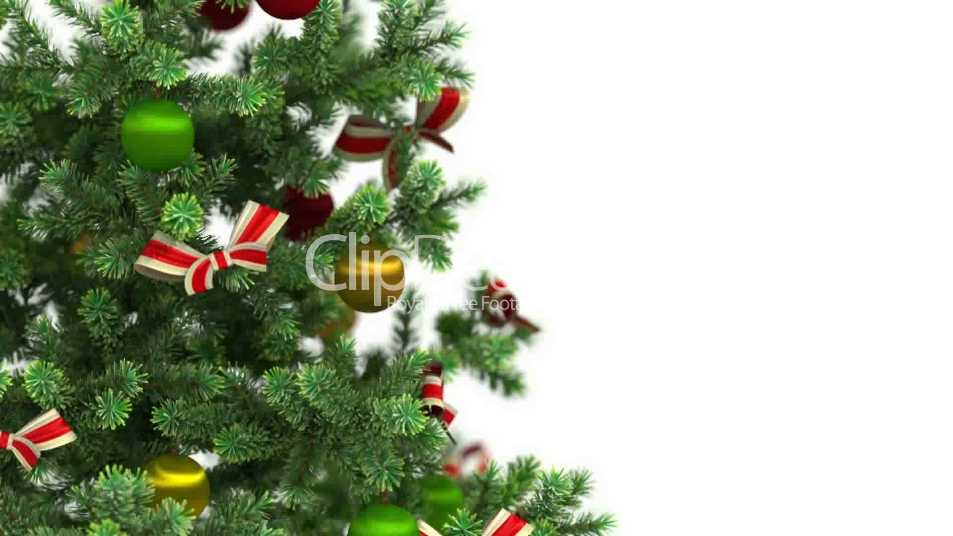 Clips Beautiful Christmas Tree Close Up On White Background