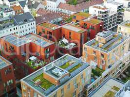 Dachbegrünung in Hamburg