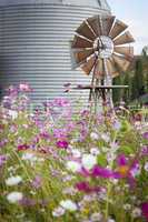 Antique Farm Windmill and Silo in a Flower Field .