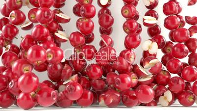 Red Apples falling down with slow motion. Alpha matte