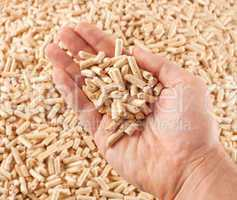 Wood pellets in hand