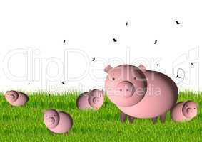 pig with small pigs