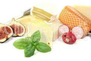 leckere auswahl an käse