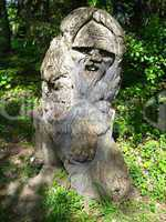 sculpture of fabulous personage cut out from a tree