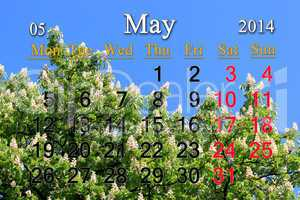 calendar for may of 2014 with crowns of chestnut