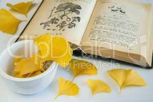 gingko, asiatisches heilmittel