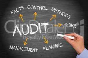Audit - Business Concept
