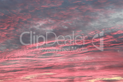 evening landscape with pink clouds
