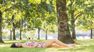 Stylish pretty brunette lying on a lawn