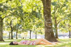 Stylish attractive brunette lying on a lawn
