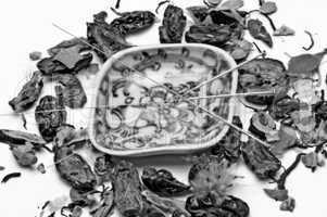 akupunkturnadeln und chinesische heilkräuter