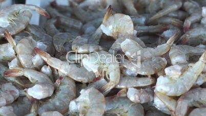fresh shrimp seafood dolly