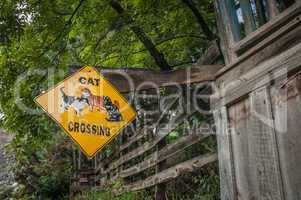 cat crossing sign in jerome arizona ghost town