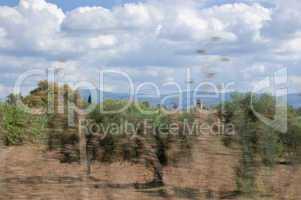 fields motion blur