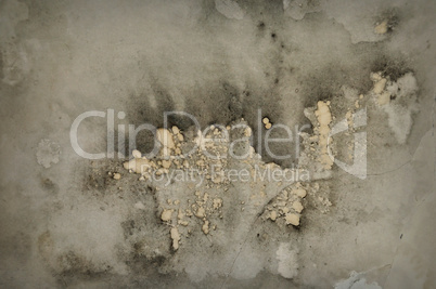 mold grunge background