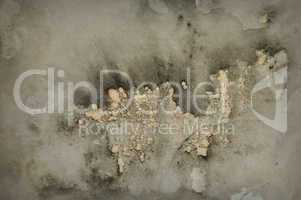 mold grunge background