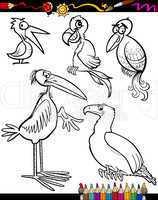 Cartoon Birds for Coloring Book