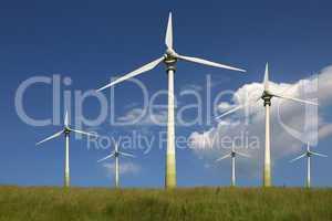 Windräder auf einer Wiese Thema Energie und Umweltschutz