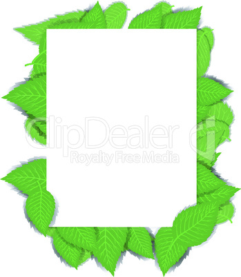 nature background with green leaves and a paper page. vector illustratio