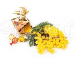 Perfume of mimosa flowers