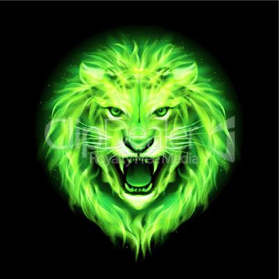 Head of fire lion.