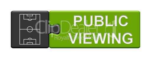 Puzzle Button: Public Viewing
