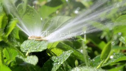 Garden Irrigation Sprinkler
