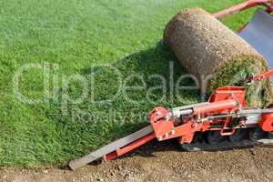 grass baling machine