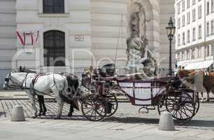 horse-driven carriage