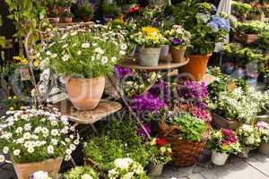 blumenladen, flower-shop