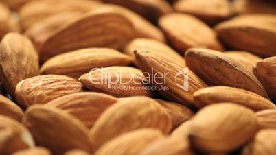 Almonds rotating