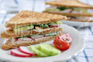 Vollkorn Sandwich mit Forelle und Gemüse