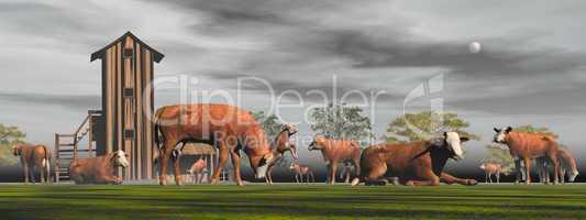 herd of hereford cows - 3d render