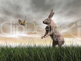 hare and bird talk - 3d render